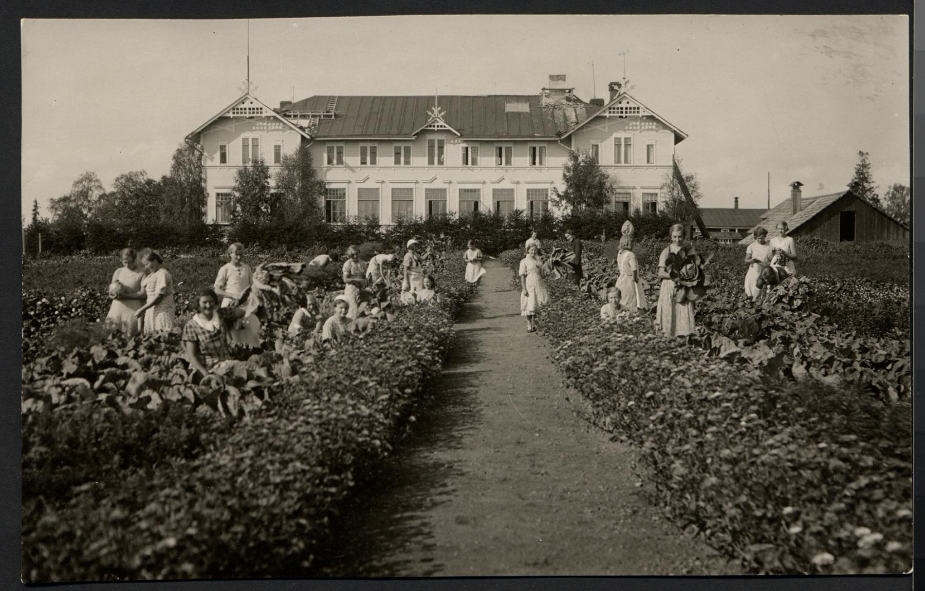 Peräpohjan kansanopiston kotitalousluokkalaisia, kuvattu Kemissä 1930-luvulla. SKS KRA. Kuvaaja: Karihaaran valokuvaamo