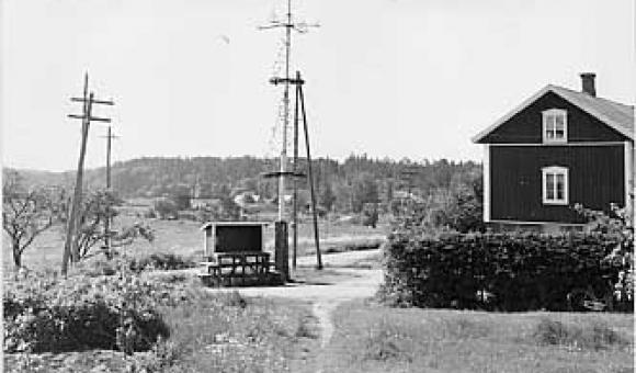 """Juhannussalko """"majstång"""" Kustavin Vartsalassa. Juha Pentikäinen, 1962"""